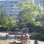 Юбилейный сквер, Тирасполь, ул. Краснодонская